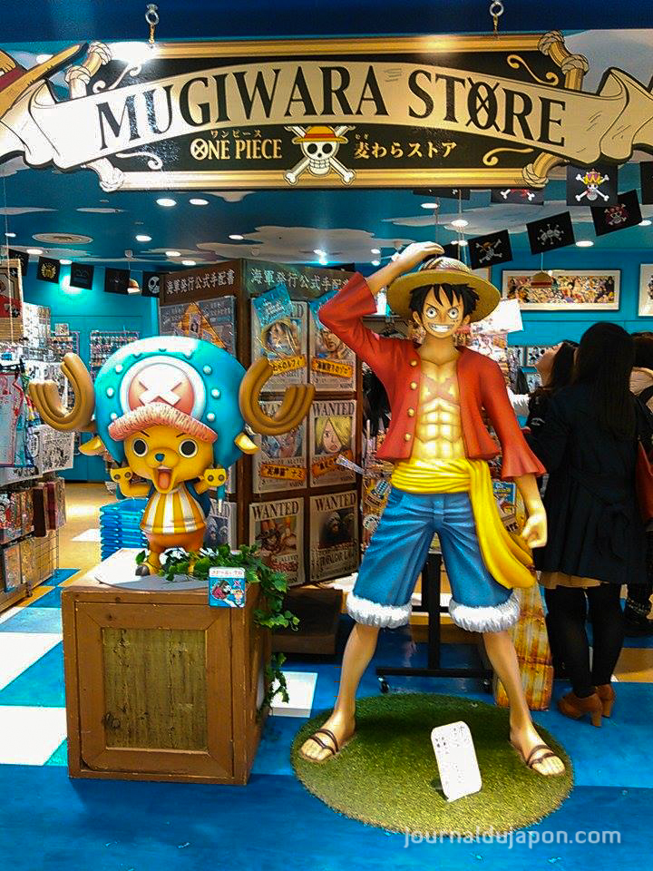 One Piece (TV), l'Anime  le Dojo Manga