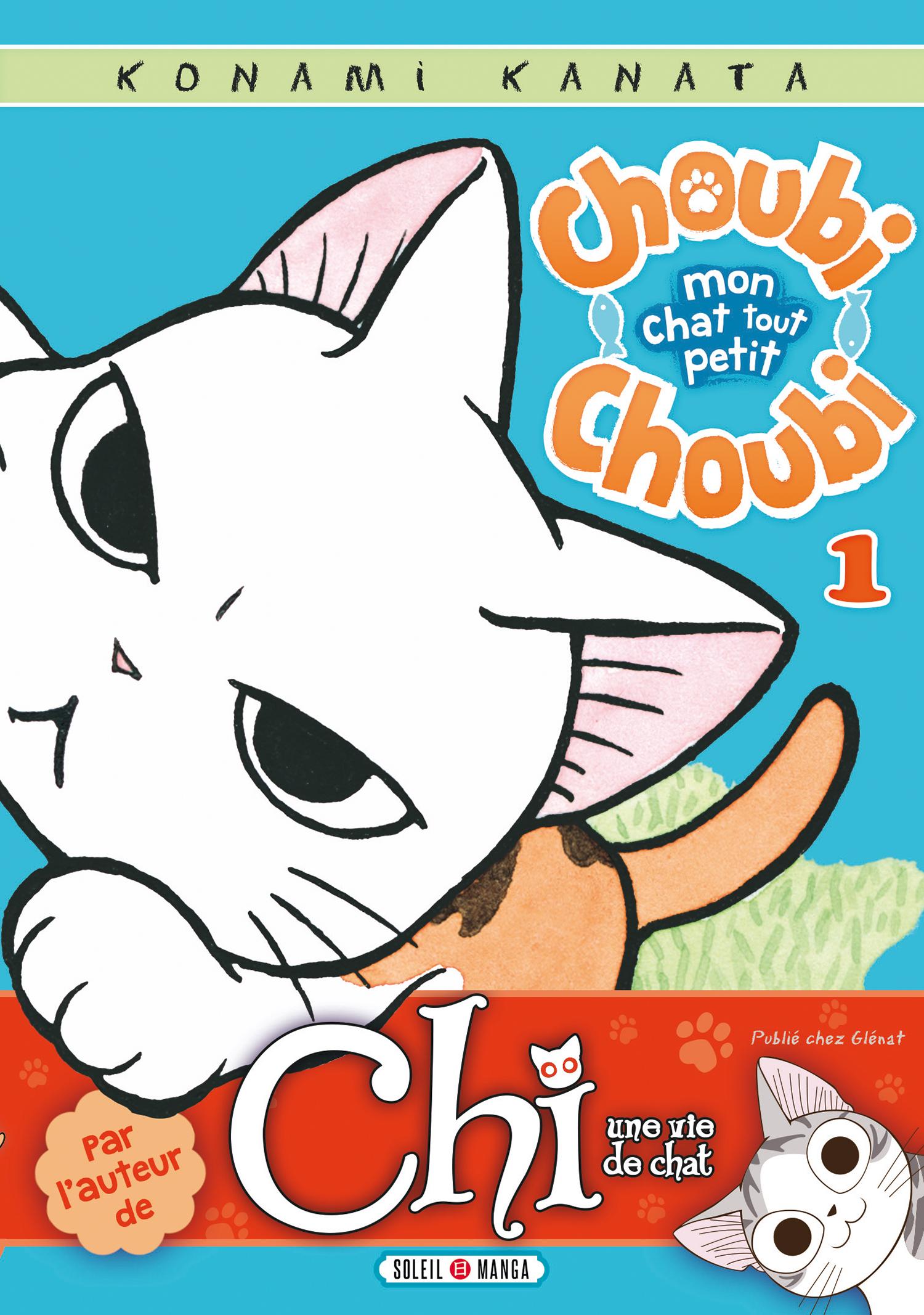 choubichoubiMonChatToutPetitT1