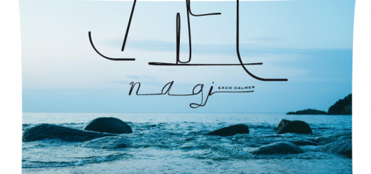 affiche-nagi