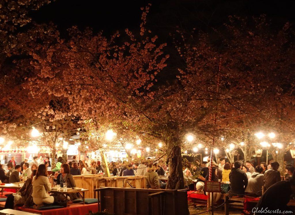 food-area-maruyama-park-kyoto