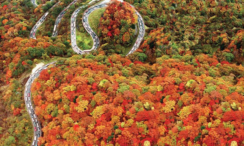 Nikko et sa route escarpée. Crédits photo: Japan-stripes