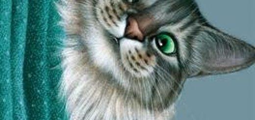 Mémoires de chat