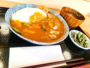 Un des plats végétarien proposé: le curry aux légumes