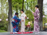 hanami-jardin-acclimatation-2016-013