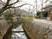 Chemin de la Philosophie, Kyoto