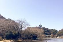 De Tokyo à Gifu, petit tour d'hiver dans le Honshu