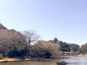 Japon 2017 C.Zaggia-21