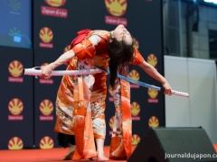 japan-expo-2015-danse-des-sabres-ideal-024