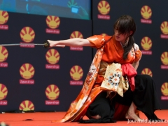japan-expo-2015-danse-des-sabres-ideal-028