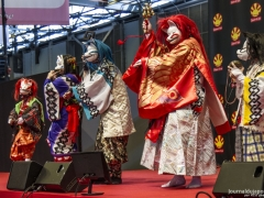 Japan Expo 2016 Show Culture (10)