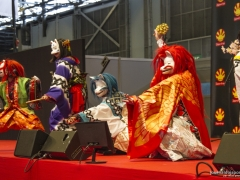 Japan Expo 2016 Show Culture (11)