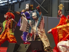 Japan Expo 2016 Show Culture (12)