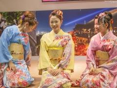 Japan Expo 2016 Show Culture (15)