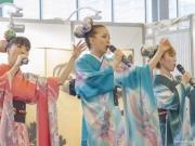 Japan Expo 2016 Show Culture (14)