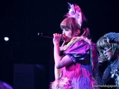 concert-kpp 013