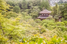 Kyoto - Été 2017
