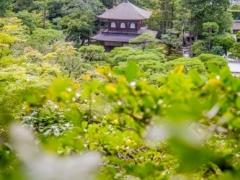 Ginkaku-Ji Kannonden_2