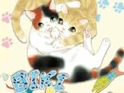 biki-maru-chat-black-box