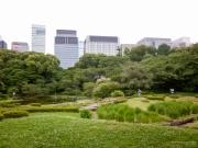 Japon - Tourisme à Tokyo-33