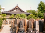 Japon - Tourisme à Tokyo-4