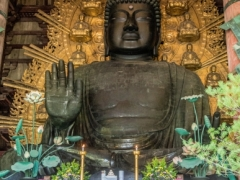 Todai-ji - The Great Buddha
