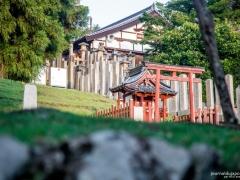Nigatsu-dō temple 2