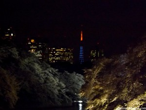 Chidorigafuchi de nuit