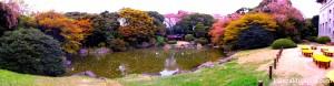 Jardin du MNT