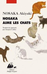 NOASAKA aime les chats