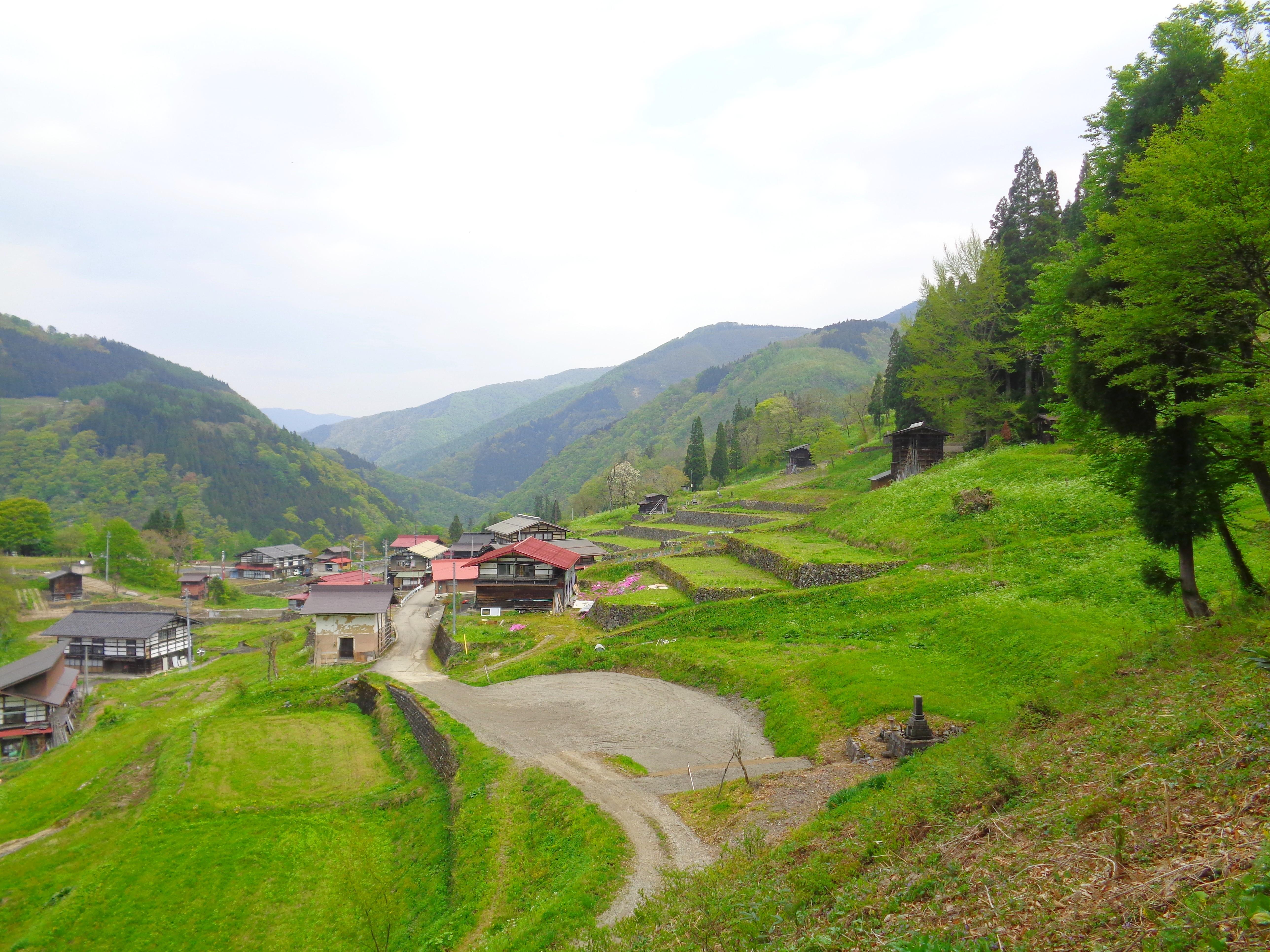 Tanekura