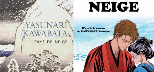 kawabata pays de neige