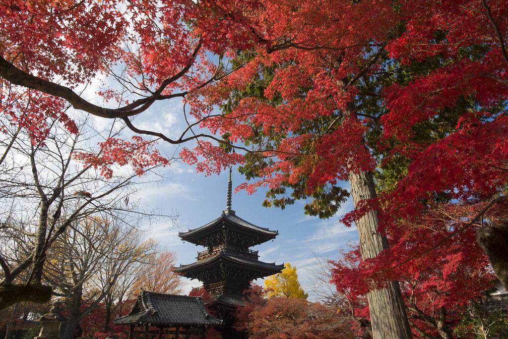 shinnyodo temple kyoto