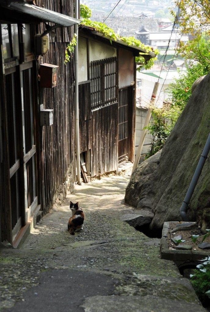 Les rues d'Onimichi se prêtent à une séance photo hors du temps. Crédits: Kashasoku