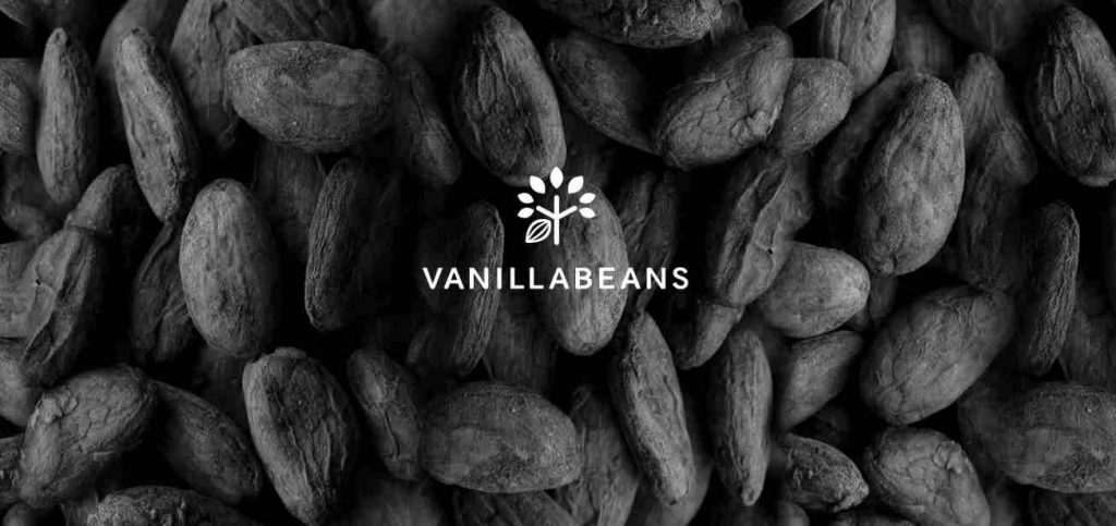 Vanilla Beans © 2015 chocolatedesign company