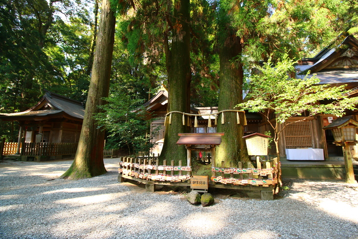 Takachiho-jinja : sanctuaire honorant Ninigi et sa femme, Feu-Apaisé et sa femme, son fils et la femme de ce dernier.
