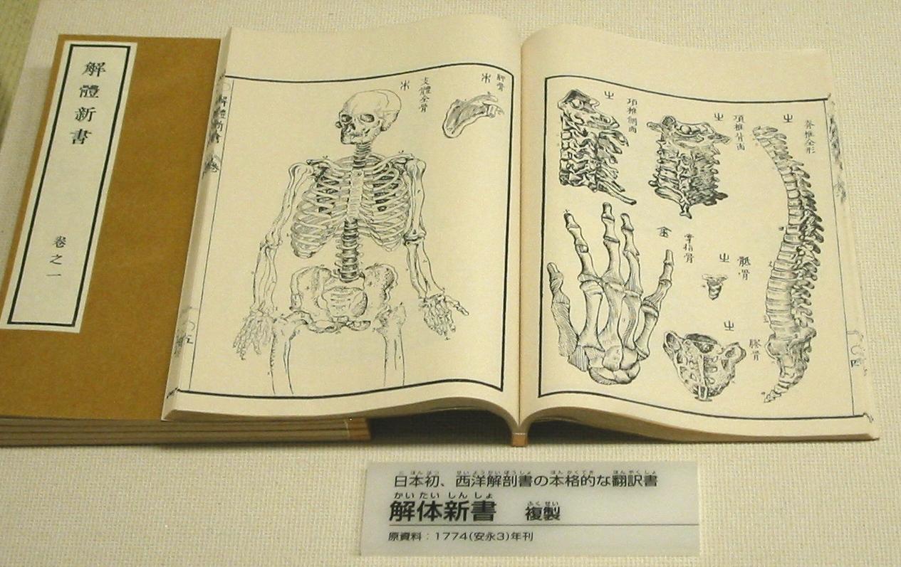 Le traité d'anatomie traduit en japonais