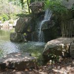 Île de Versailles - relaxation à la cascade avec le clapotis de l'eau
