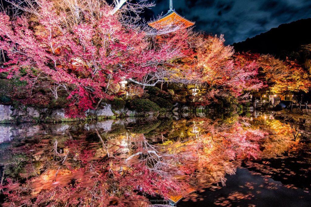 Automne Japon ©Dozodomo.com