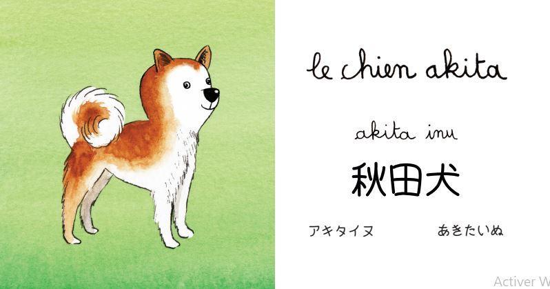 mon imagier japonais, les animaux : page intérieure