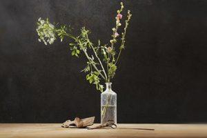ikebana, l'art floral wabi sabi