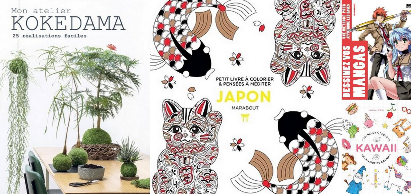 Vacances Ponts Et Si On Créait Japonais