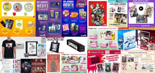 Goodies Japan Expo 2019