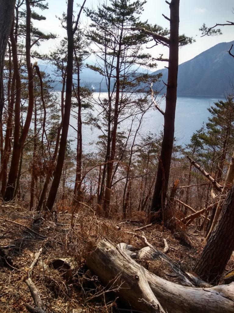 Le lac Motosu depuis un sentier de randonnée menant au poste d'observation Nakanoura-tôge. Crédits photo : Pascal Voglimacci ©journaldujapon.com – Tous droits réservés.