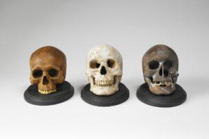 Crânes réalisés par Toshimasa Kikuchi