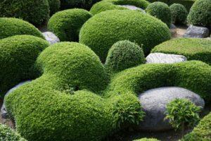 Le fuzei dans les jardins japonais : page intérieure