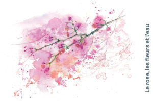 Kisetsu : page intérieure, printemps