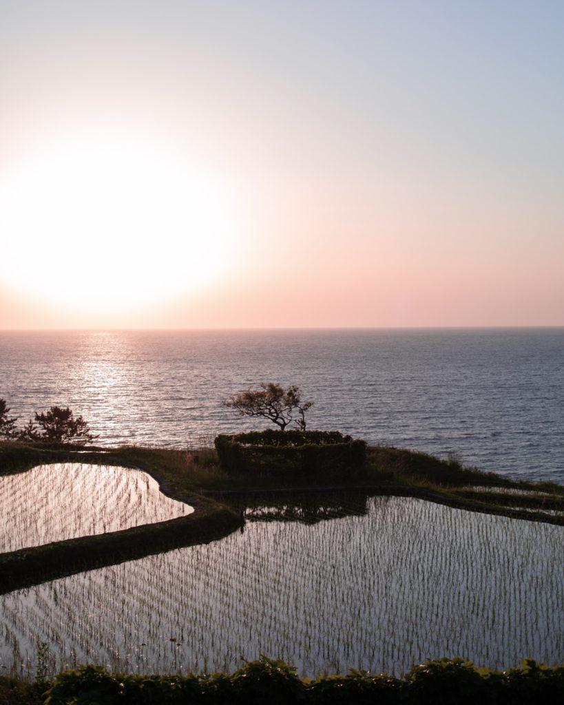 Les rizières de Wajima, exemple d'un des paysages du Japon ©80JoursJapon