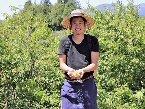 Yasashi Ume-yasan, culture de prunes biologiques