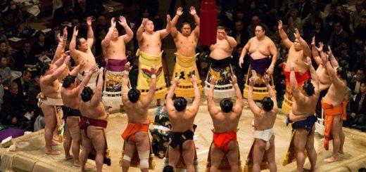 UNE de l'article sur les sumo, ces titan des tatami