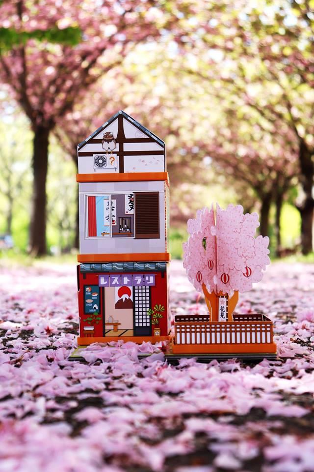 La sakura dori au milieu des pétales de cerisier